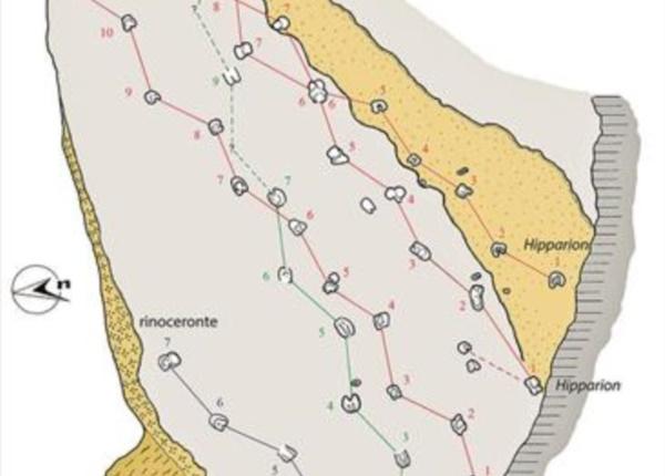 piste mammiferi di osoppo con il trelativo schema (da Dalla Vecchia)2
